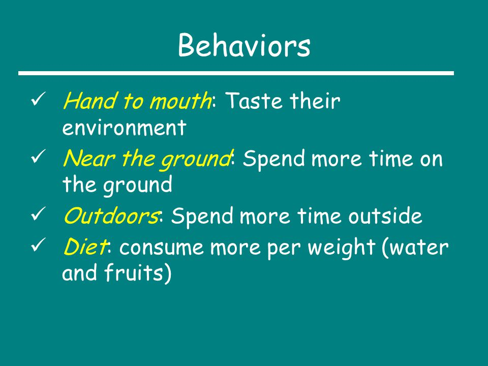 Behaviors Hand to mouth: Taste their environment