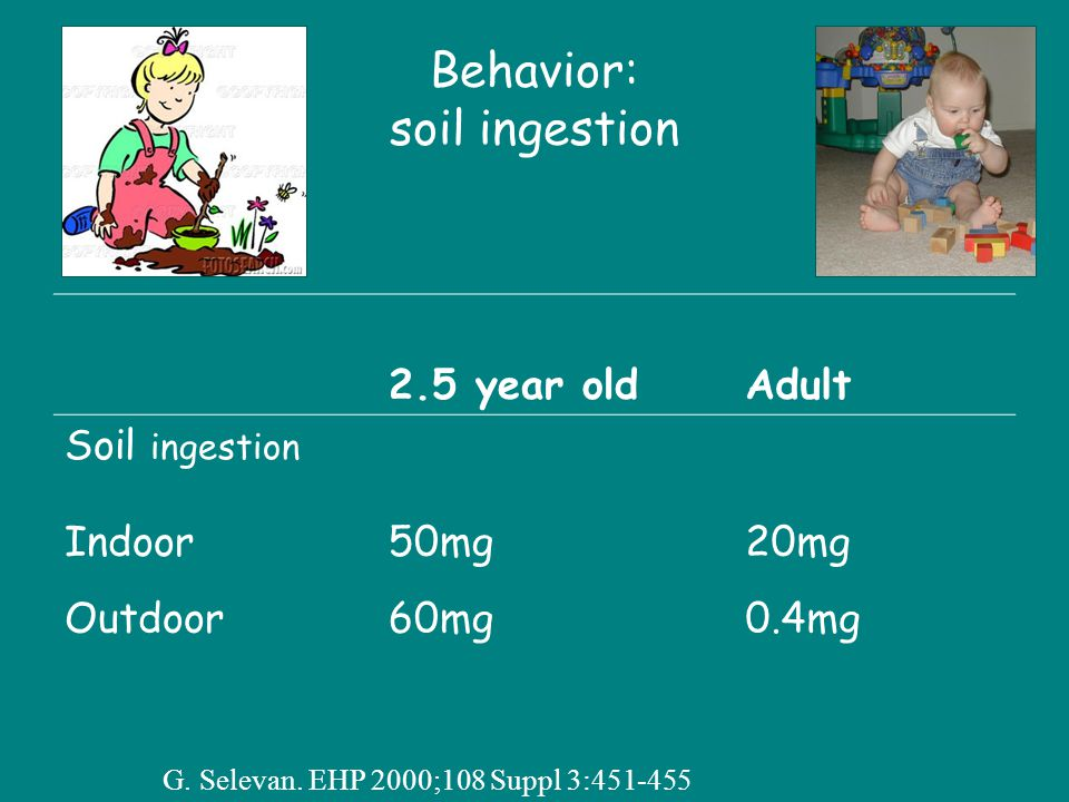 Behavior: soil ingestion