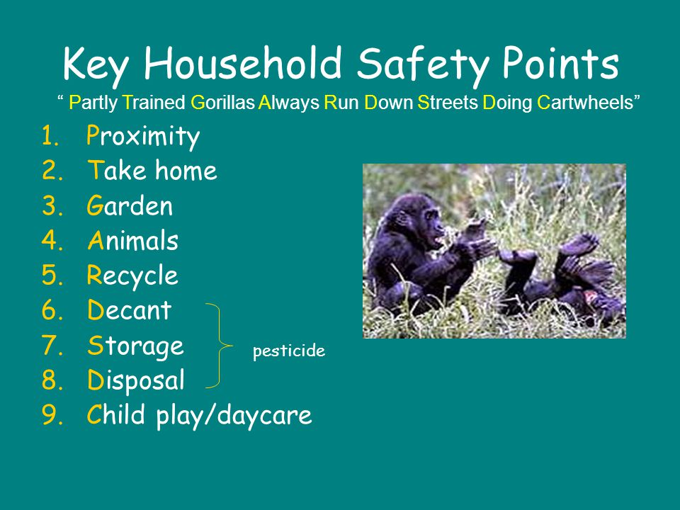 Key Household Safety Points