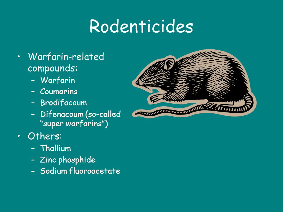 Rodenticides Warfarin-related compounds: Others: Warfarin Coumarins