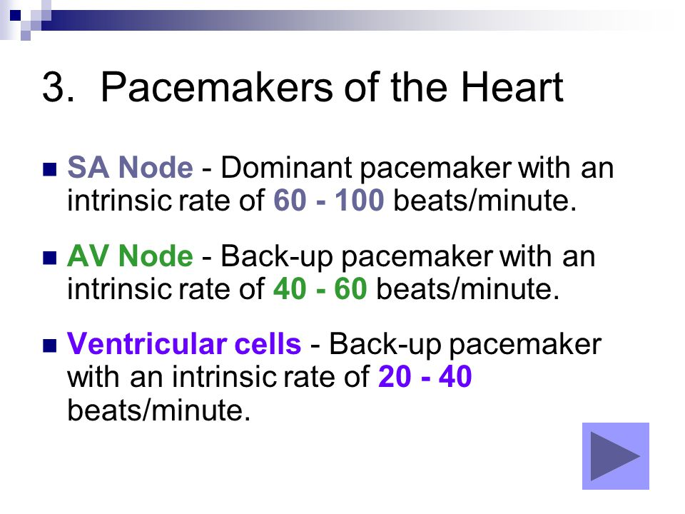 3. Pacemakers of the Heart