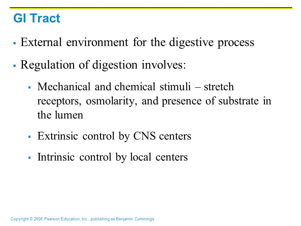 External environment for the digestive process