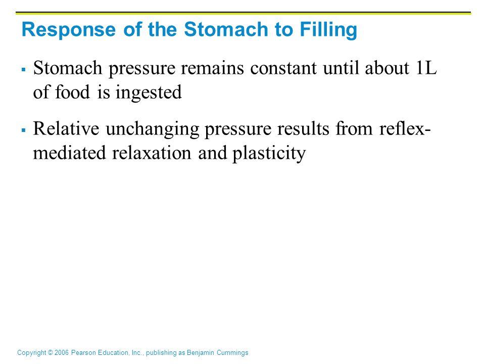 Response of the Stomach to Filling