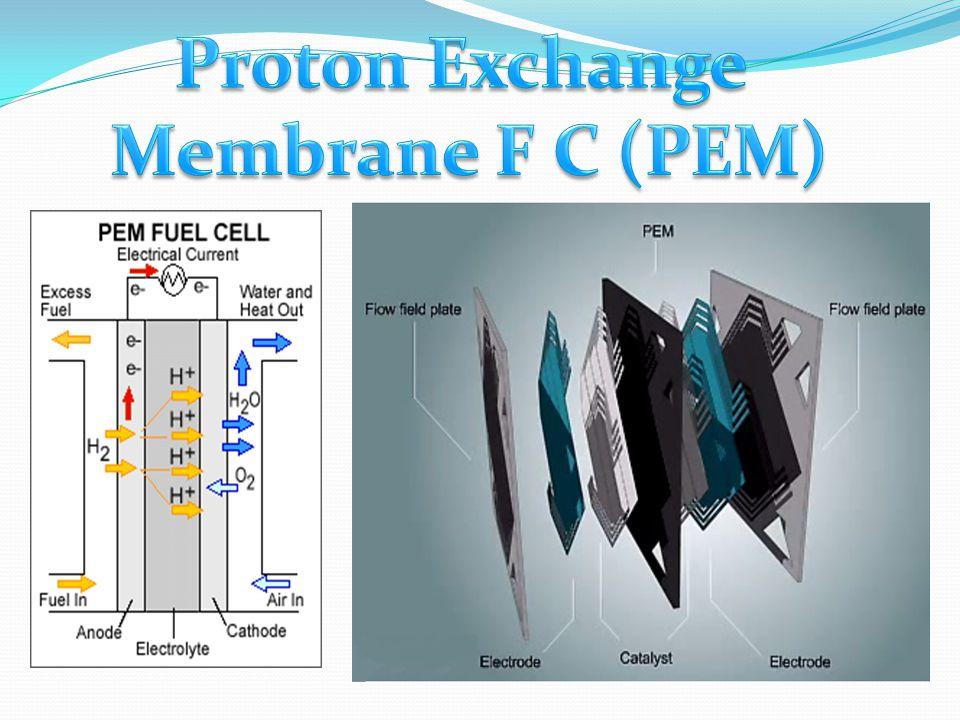 Proton Exchange Membrane F C (PEM)