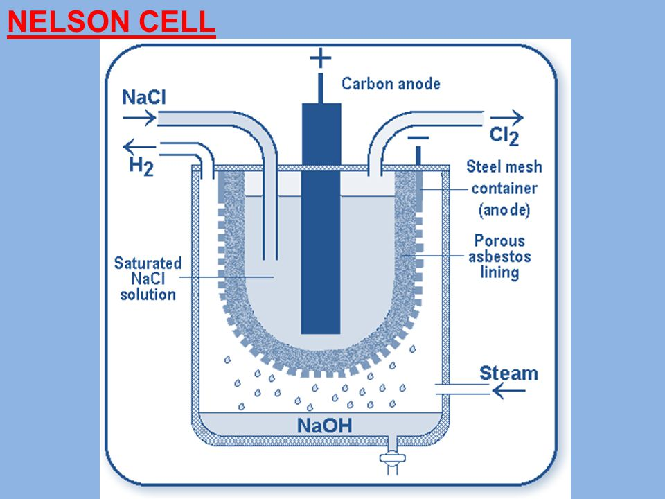 NELSON CELL