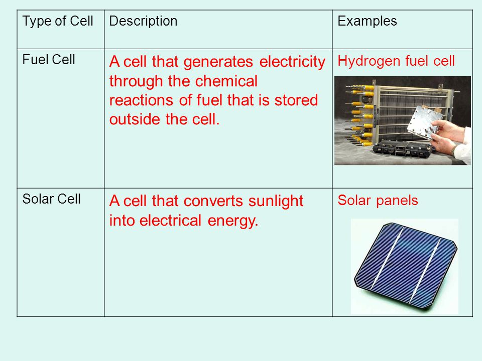 A cell that converts sunlight into electrical energy.
