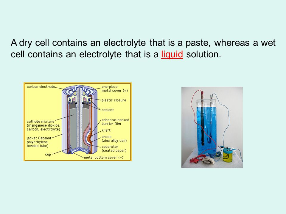 A dry cell contains an electrolyte that is a paste, whereas a wet cell contains an electrolyte that is a liquid solution.