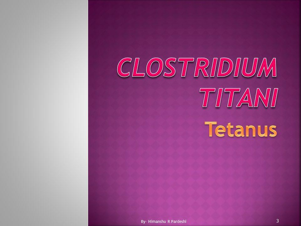 Clostridium titani Tetanus By- Himanshu R Pardeshi