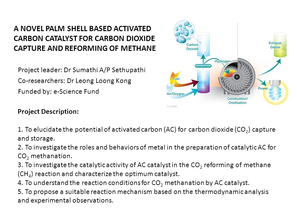 A NOVEL PALM SHELL BASED ACTIVATED CARBON CATALYST FOR CARBON DIOXIDE