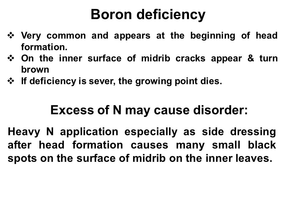 Boron deficiency Excess of N may cause disorder: