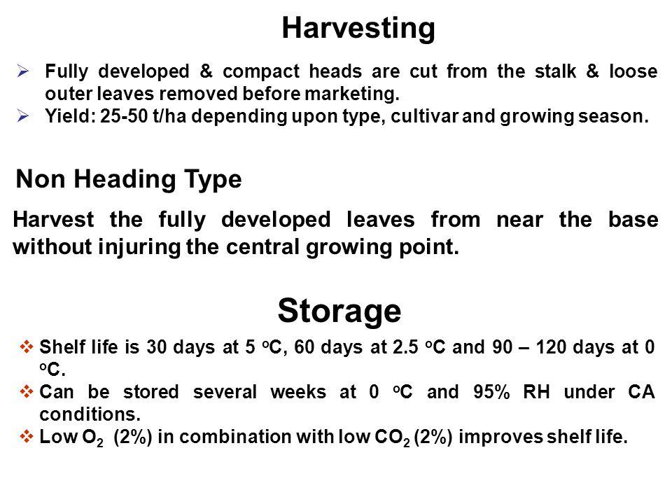 Storage Harvesting Non Heading Type