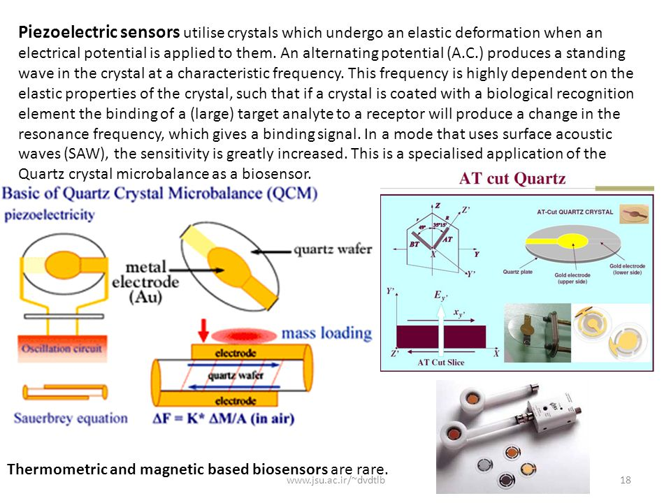 Piezoelectric sensors utilise crystals which undergo an elastic deformation when an electrical potential is applied to them. An alternating potential (A.C.) produces a standing wave in the crystal at a characteristic frequency. This frequency is highly dependent on the elastic properties of the crystal, such that if a crystal is coated with a biological recognition element the binding of a (large) target analyte to a receptor will produce a change in the resonance frequency, which gives a binding signal. In a mode that uses surface acoustic waves (SAW), the sensitivity is greatly increased. This is a specialised application of the Quartz crystal microbalance as a biosensor.
