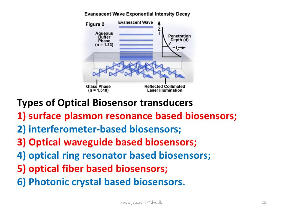 Types of Optical Biosensor transducers