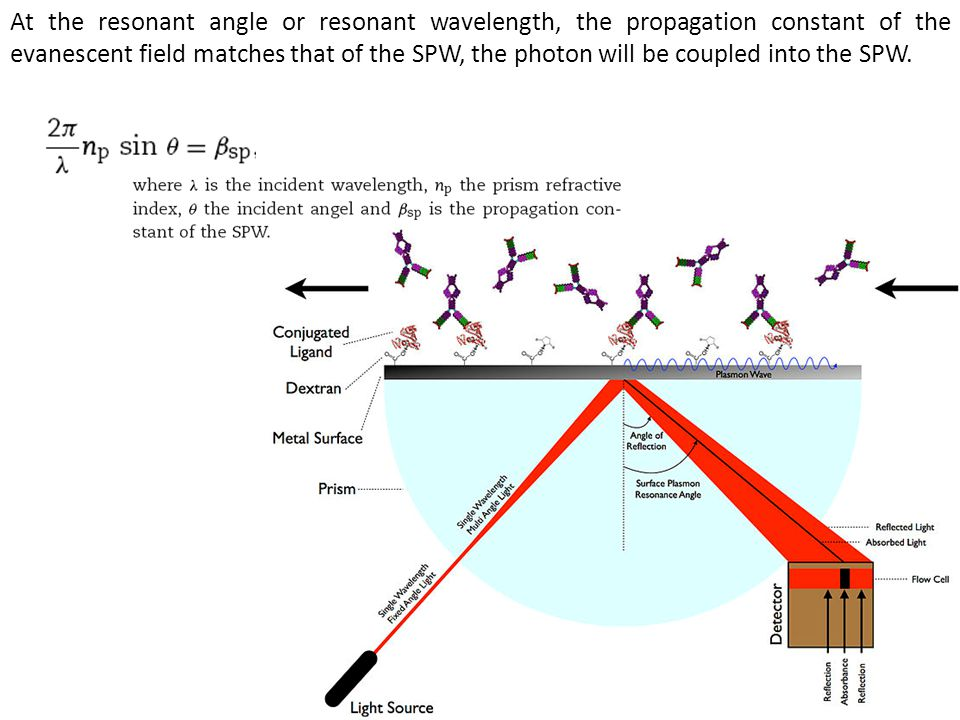 At the resonant angle or resonant wavelength, the propagation constant of the evanescent field matches that of the SPW, the photon will be coupled into the SPW.