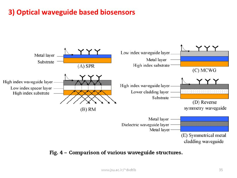 3) Optical waveguide based biosensors