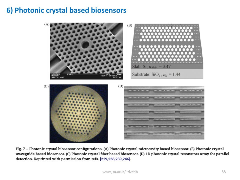 6) Photonic crystal based biosensors