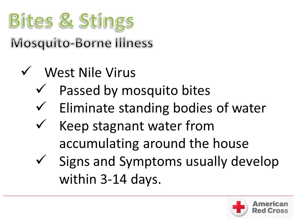 Bites & Stings Mosquito-Borne Illness West Nile Virus