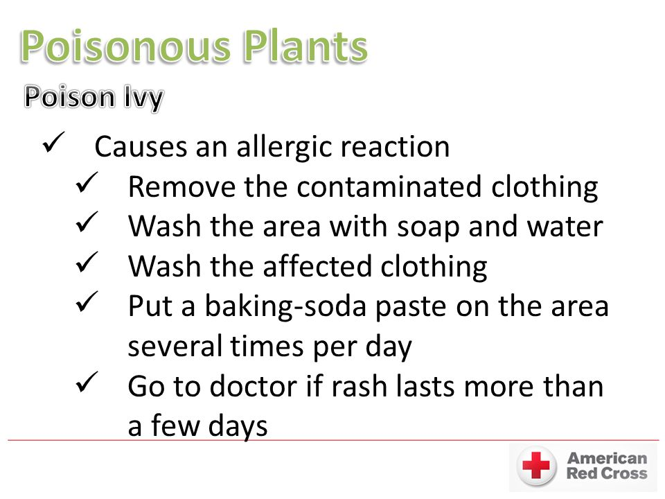 Poisonous Plants Poison Ivy Causes an allergic reaction