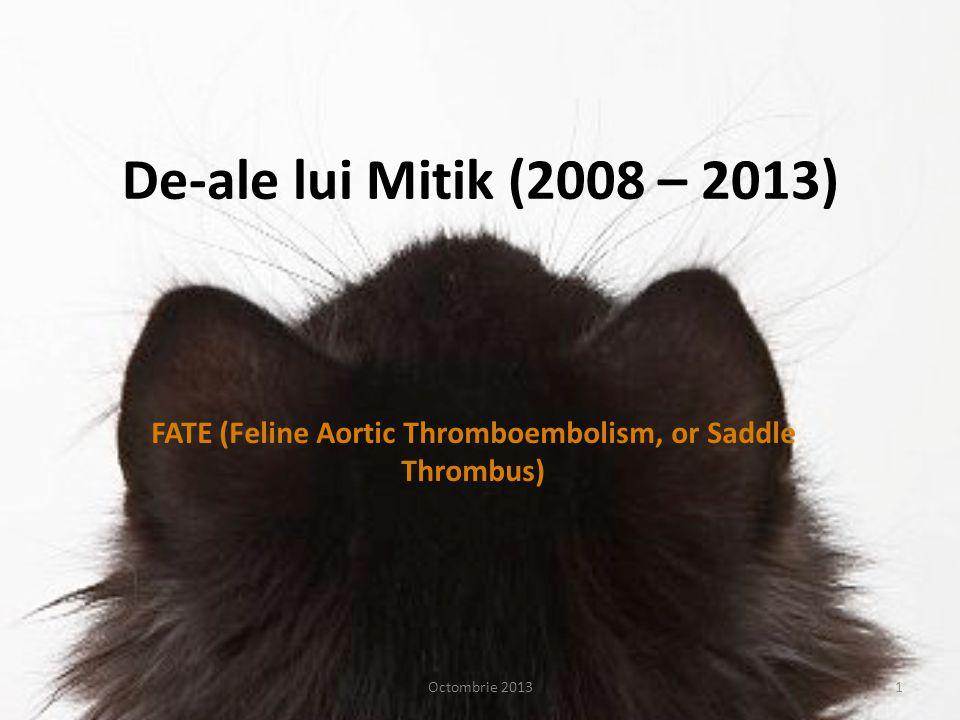 FATE (Feline Aortic Thromboembolism, or Saddle Thrombus)