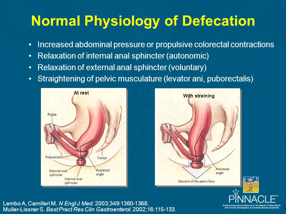 Normal Physiology of Defecation