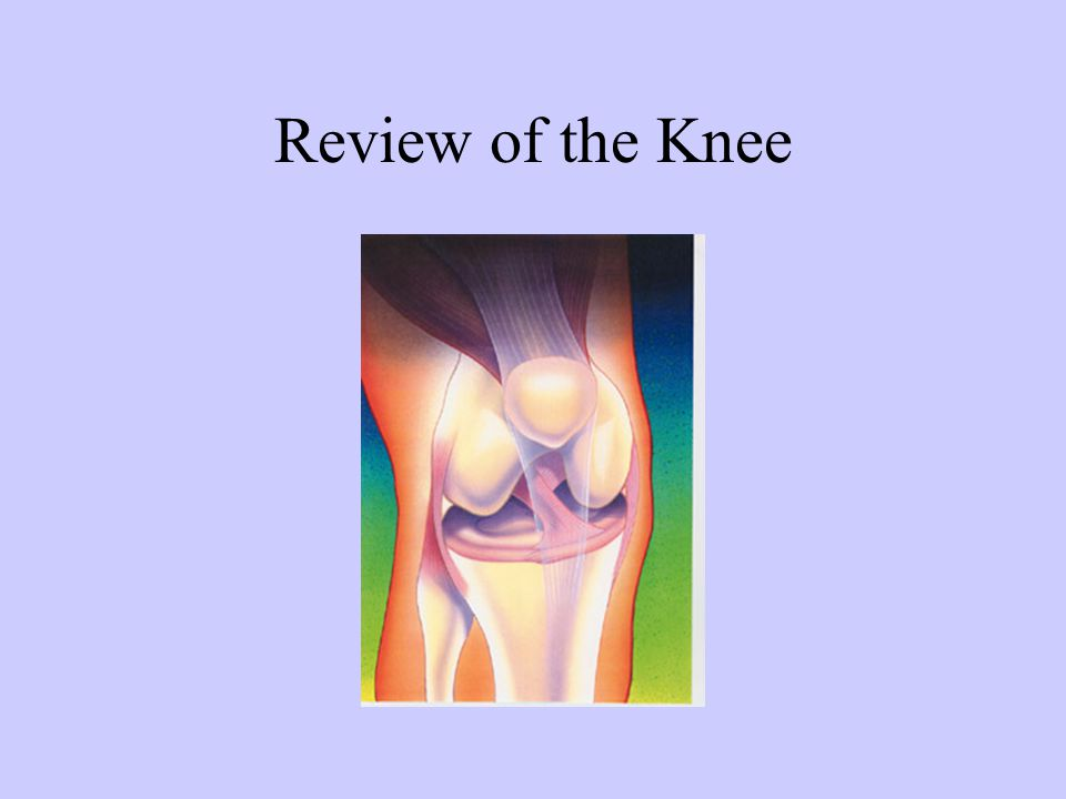 Review of the Knee