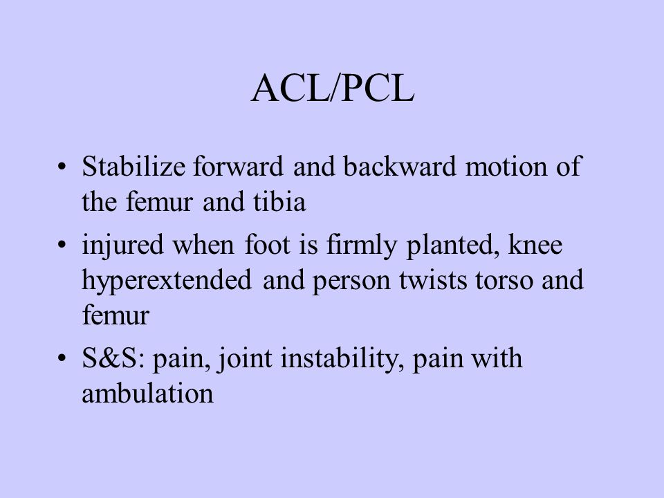 ACL/PCL Stabilize forward and backward motion of the femur and tibia