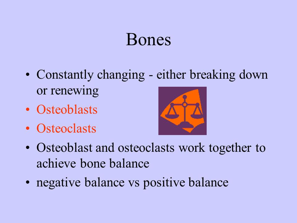 Bones Constantly changing - either breaking down or renewing