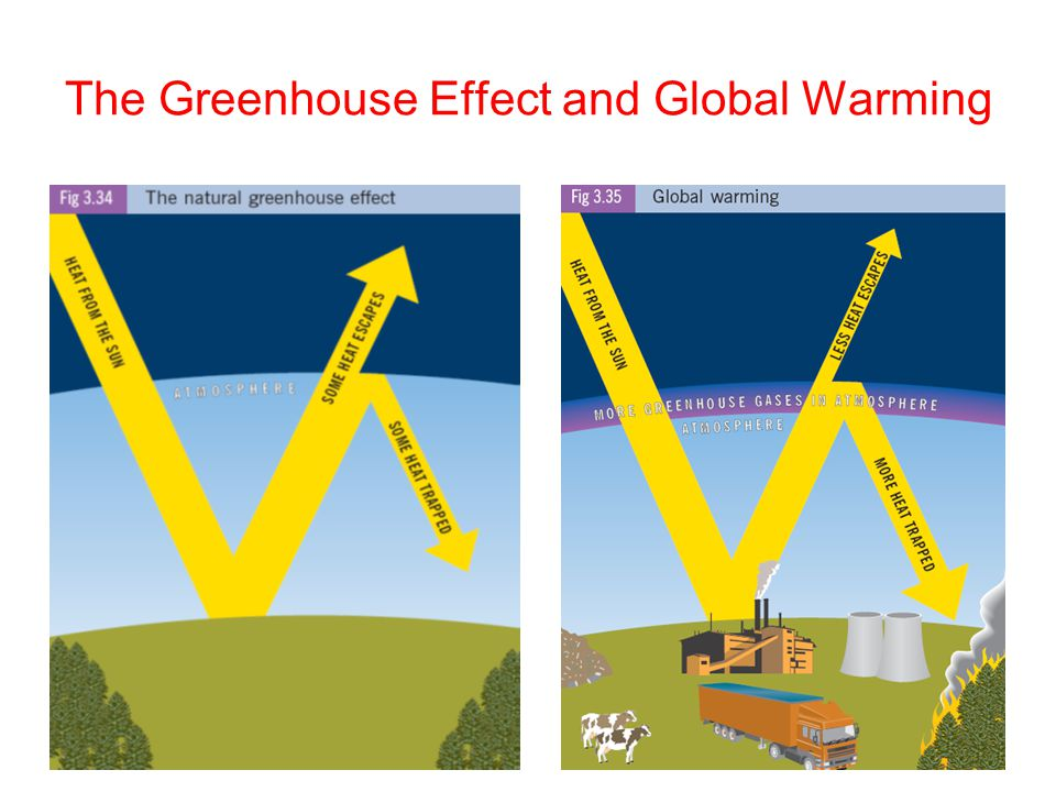 green houseeffect and global warming Most scientists say that human production of greenhouse gases is responsible for global on the climate & global warming greenhouse effect on the climate.