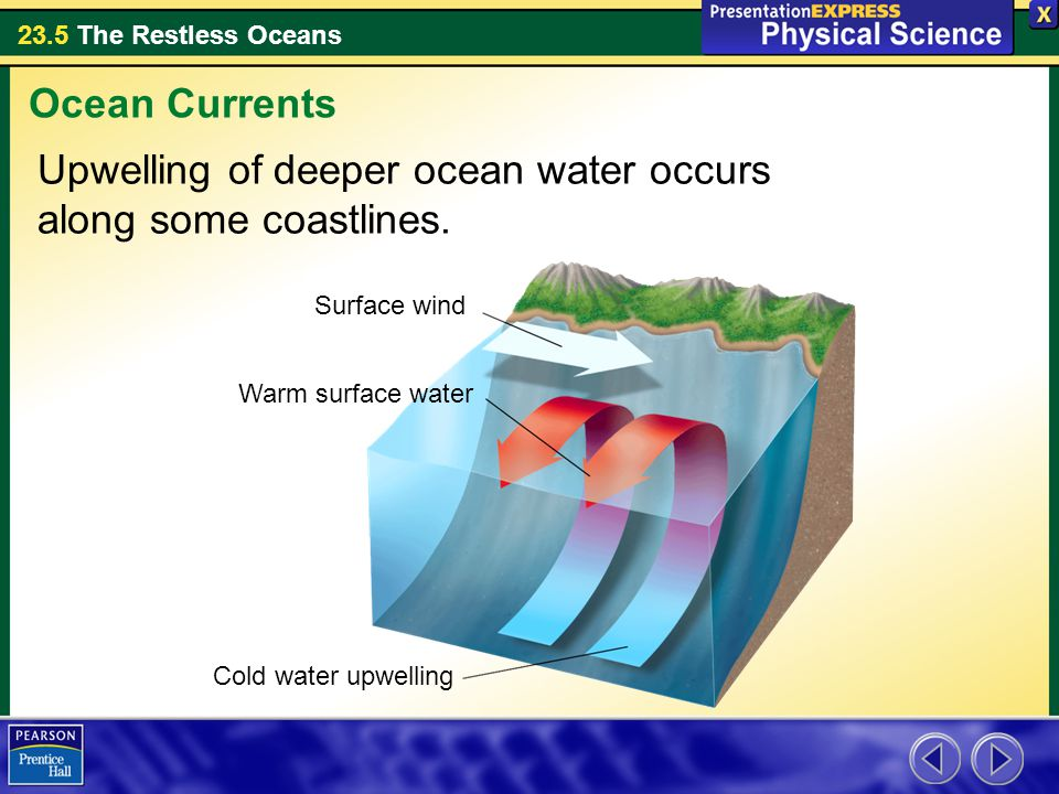 Upwelling of deeper ocean water occurs along some coastlines.