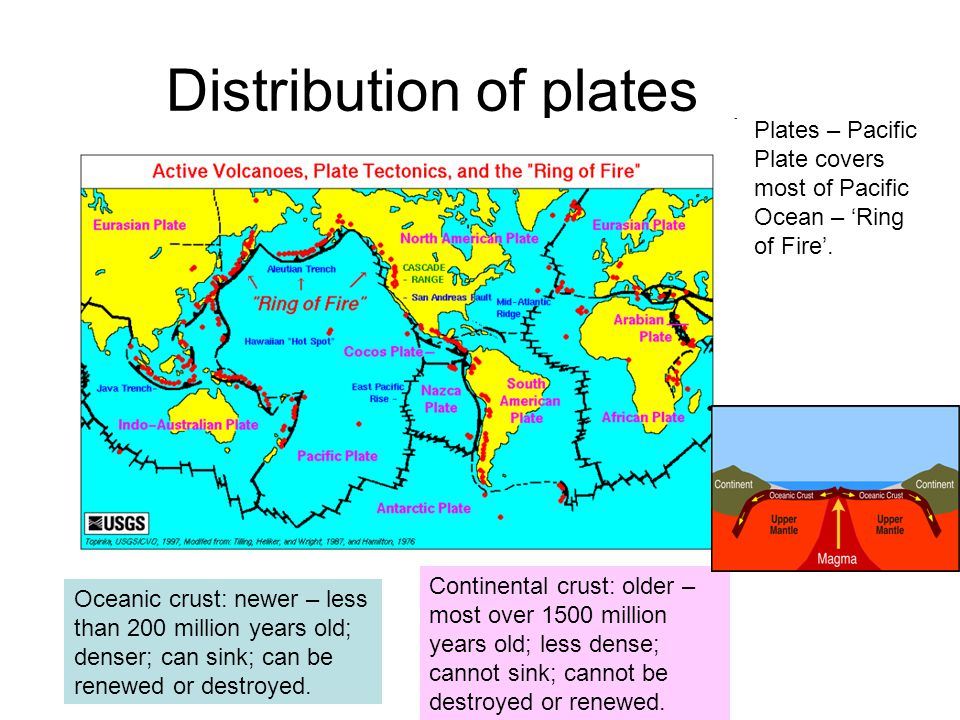 Distribution of plates