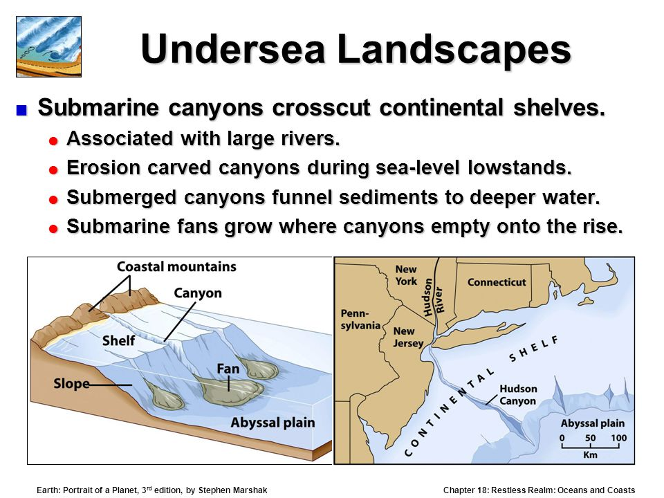 Undersea Landscapes Submarine canyons crosscut continental shelves.