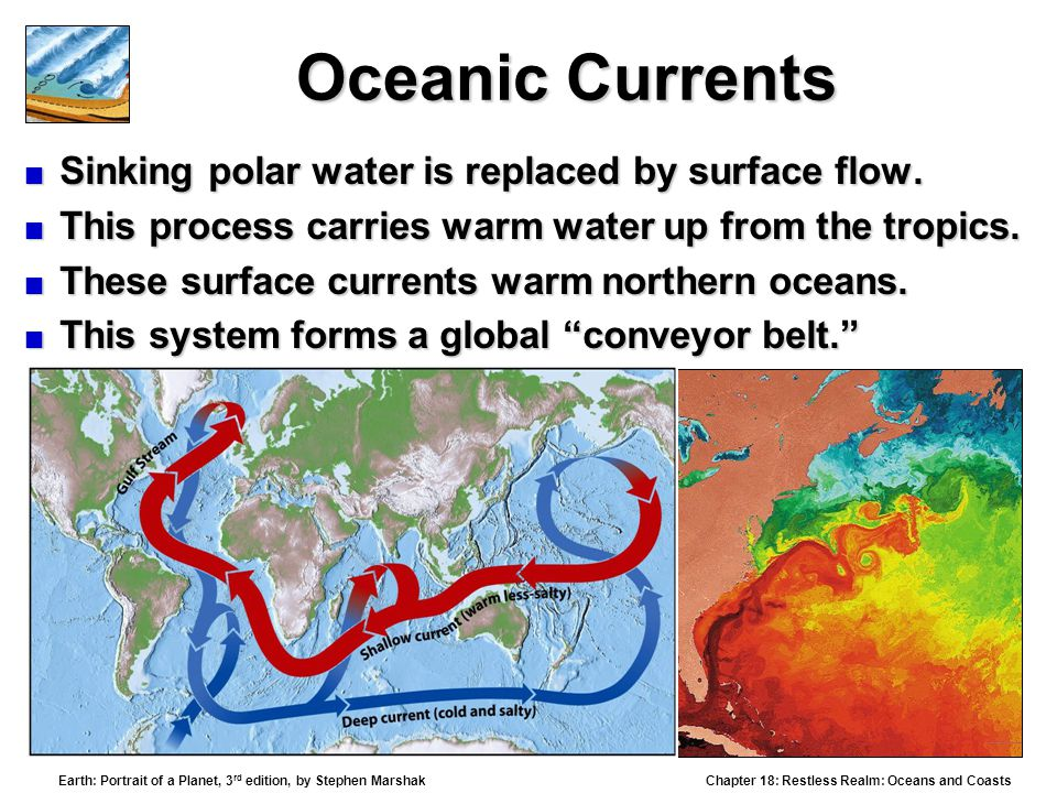 Oceanic Currents Sinking polar water is replaced by surface flow.