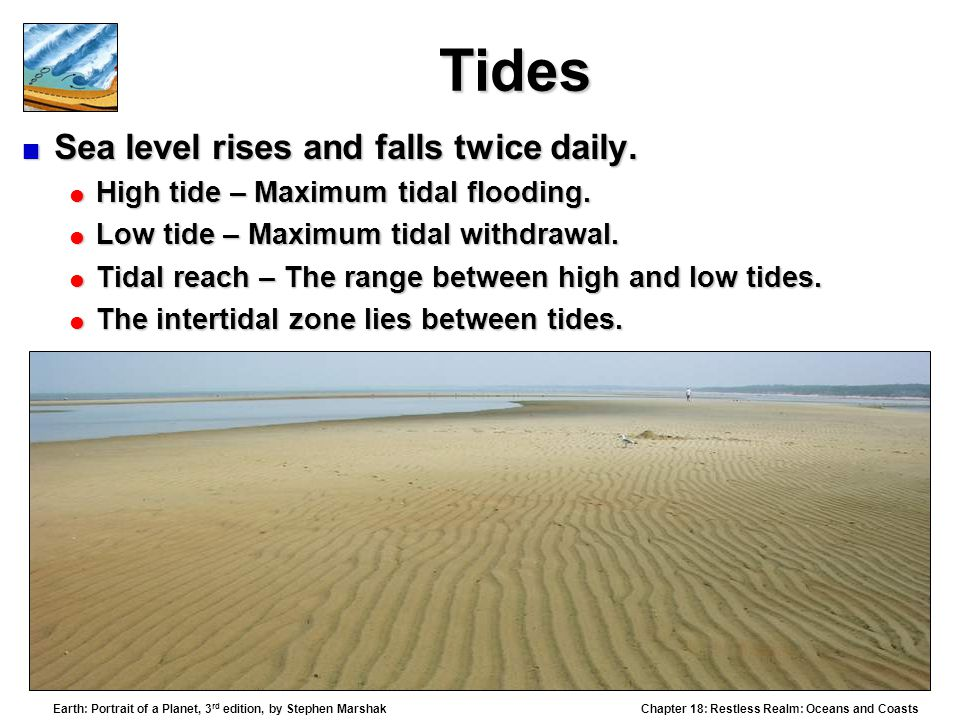 Tides Sea level rises and falls twice daily.