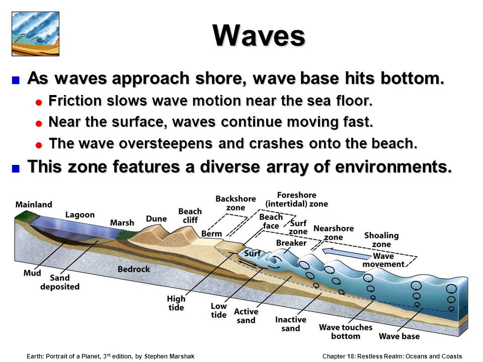 Waves As waves approach shore, wave base hits bottom.