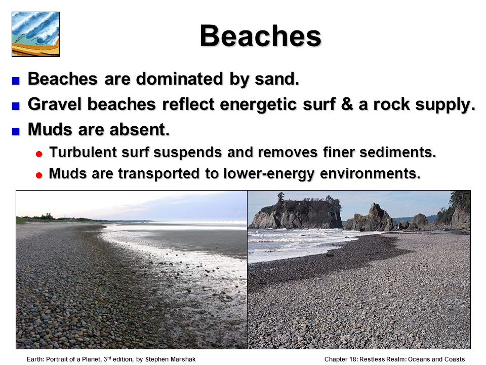 Beaches Beaches are dominated by sand.