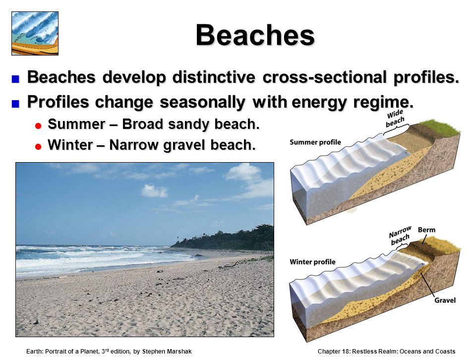 Beaches Beaches develop distinctive cross-sectional profiles.
