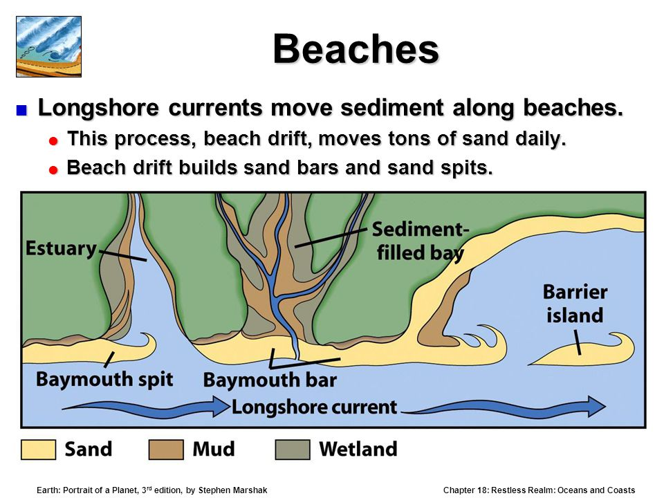 Beaches Longshore currents move sediment along beaches.