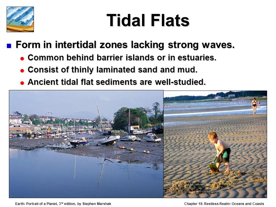 Tidal Flats Form in intertidal zones lacking strong waves.
