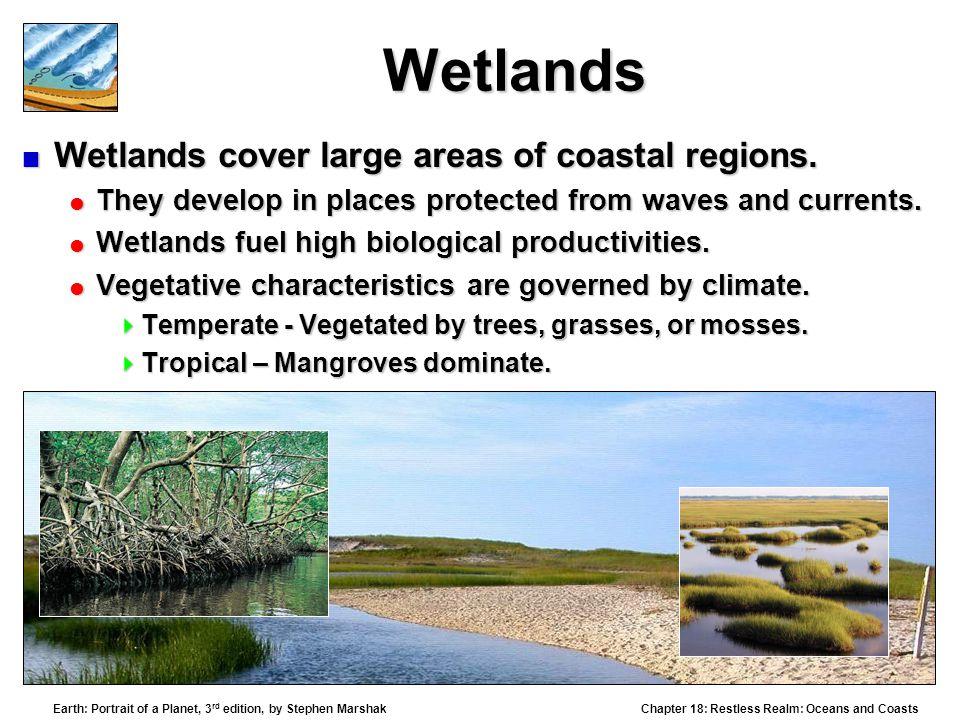 Wetlands Wetlands cover large areas of coastal regions.