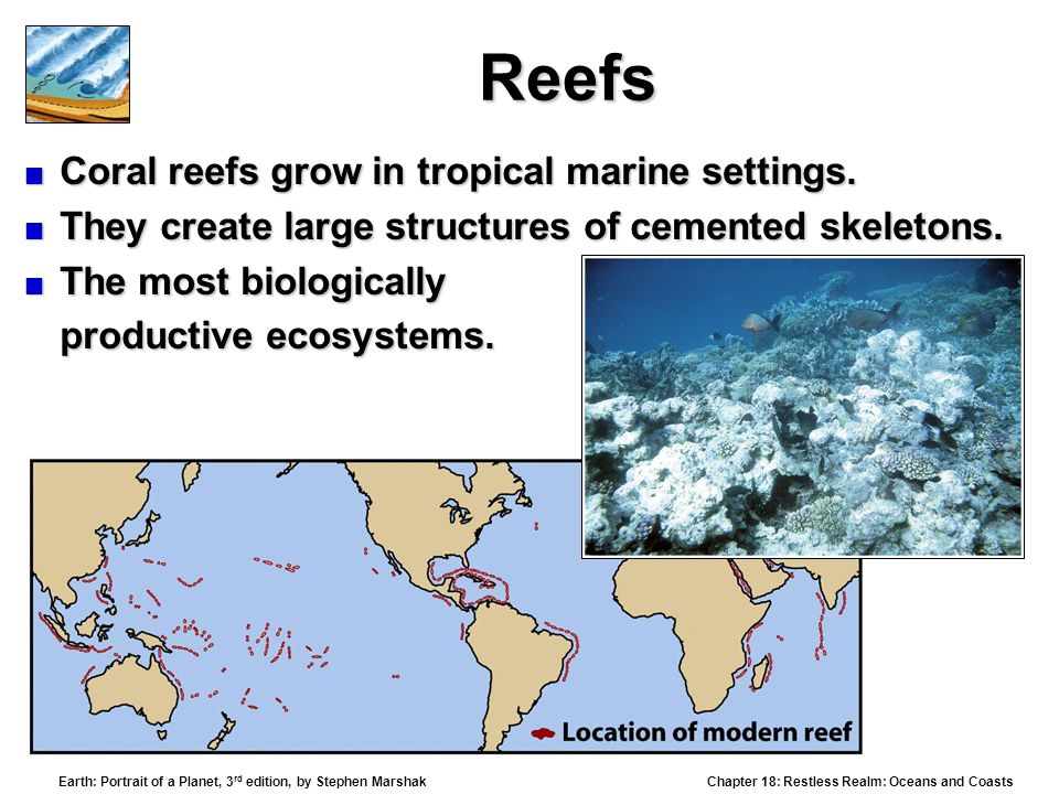 Reefs Coral reefs grow in tropical marine settings.