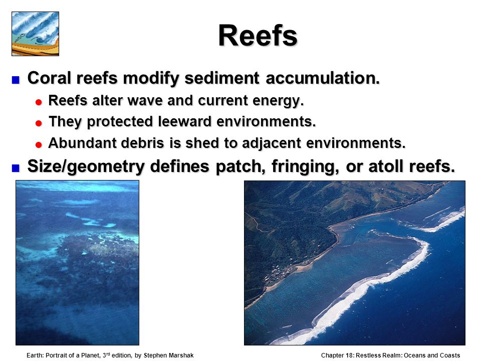 Reefs Coral reefs modify sediment accumulation.