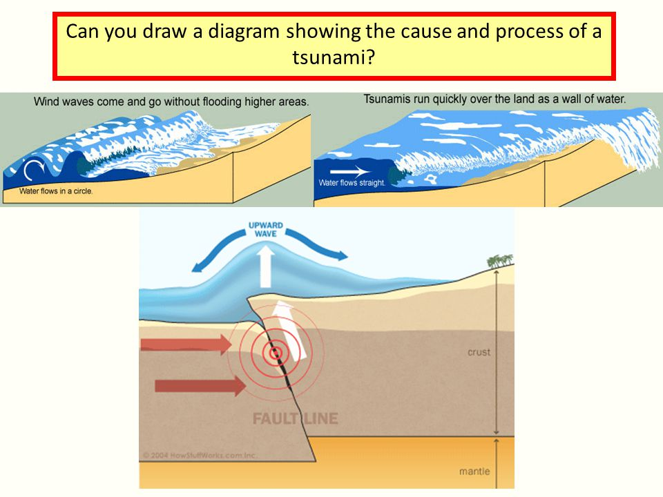 Can you draw a diagram showing the cause and process of a tsunami