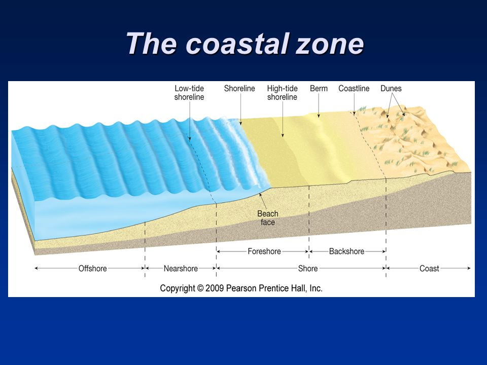 The coastal zone