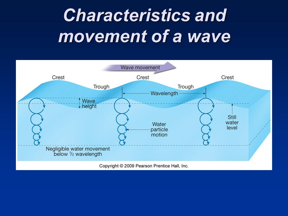 Characteristics and movement of a wave