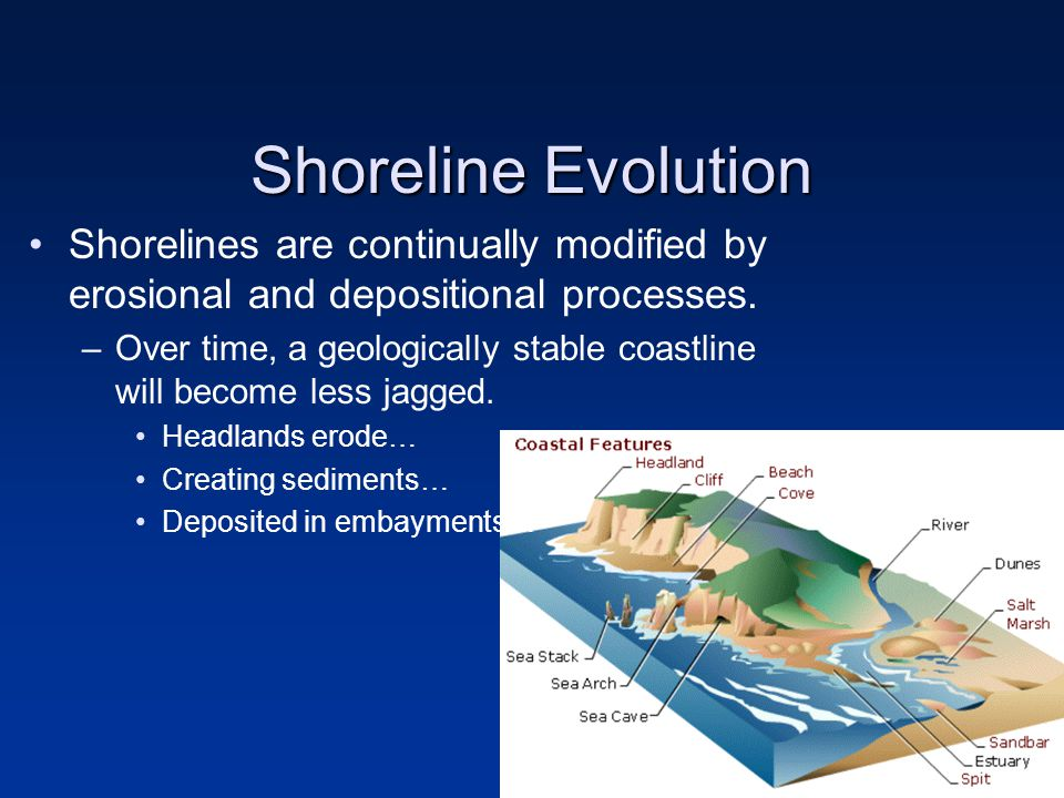 Shoreline Evolution Shorelines are continually modified by erosional and depositional processes.