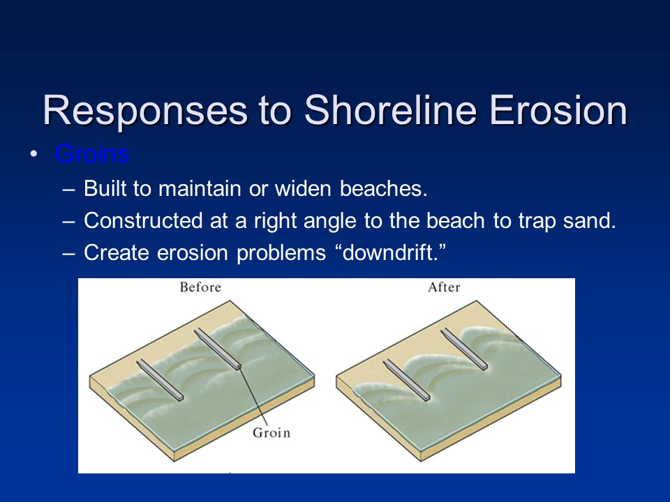 Responses to Shoreline Erosion