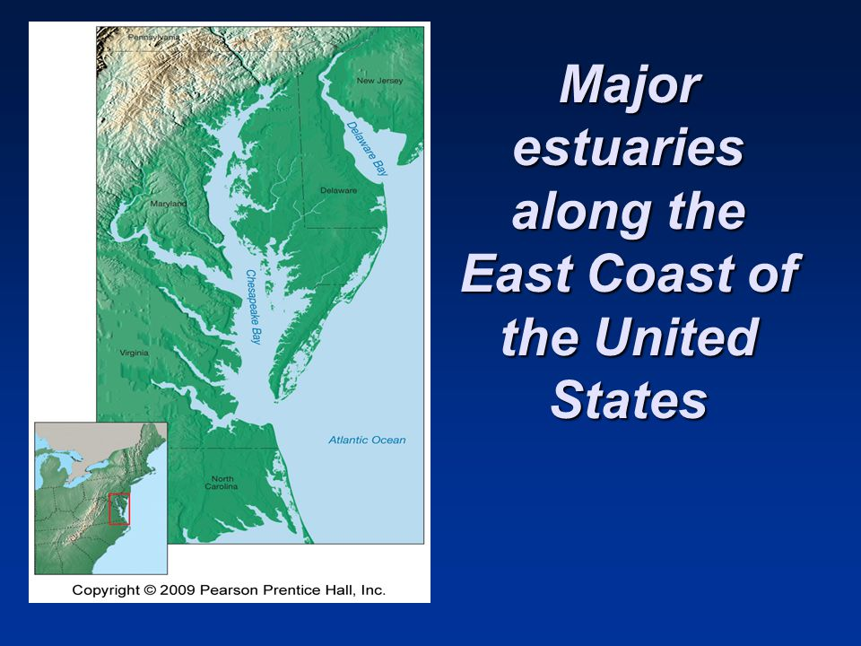 Major estuaries along the East Coast of the United States