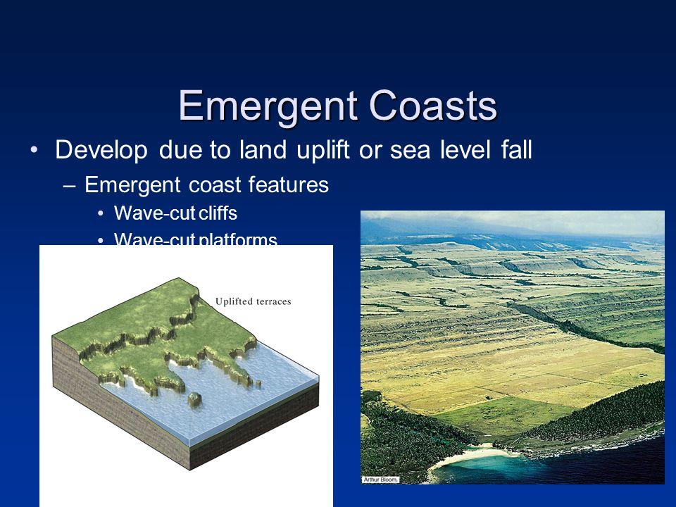 Emergent Coasts Develop due to land uplift or sea level fall