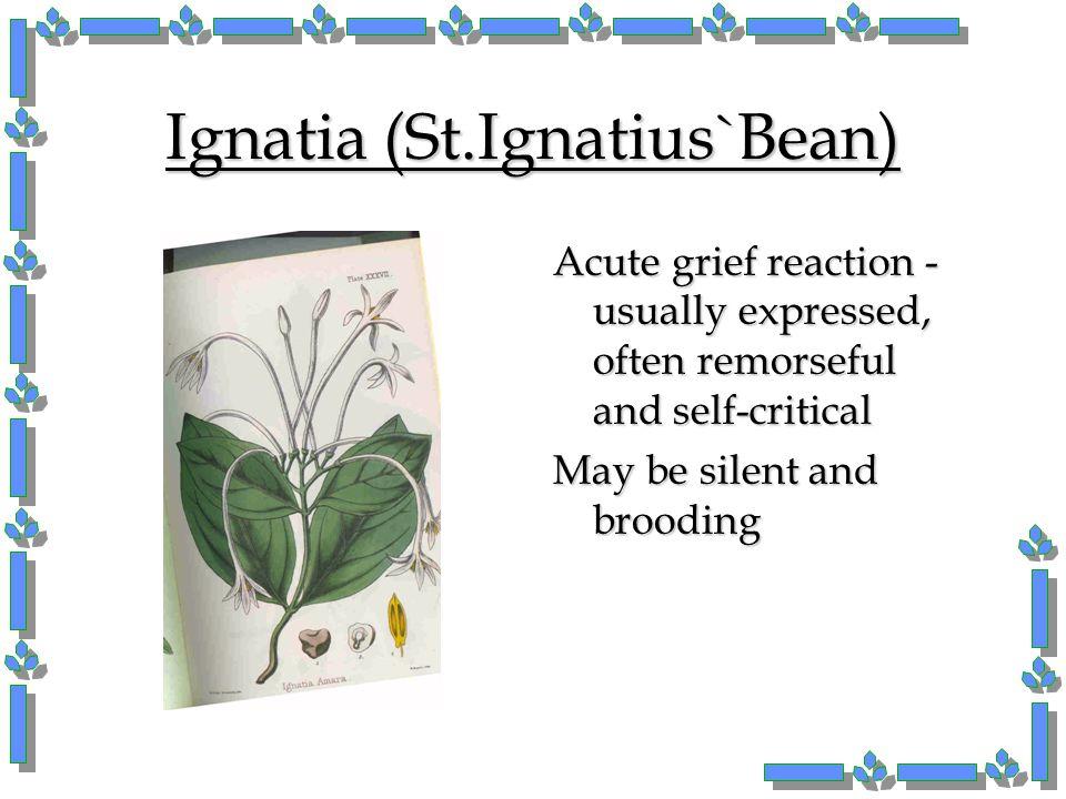 Ignatia (St.Ignatius`Bean)