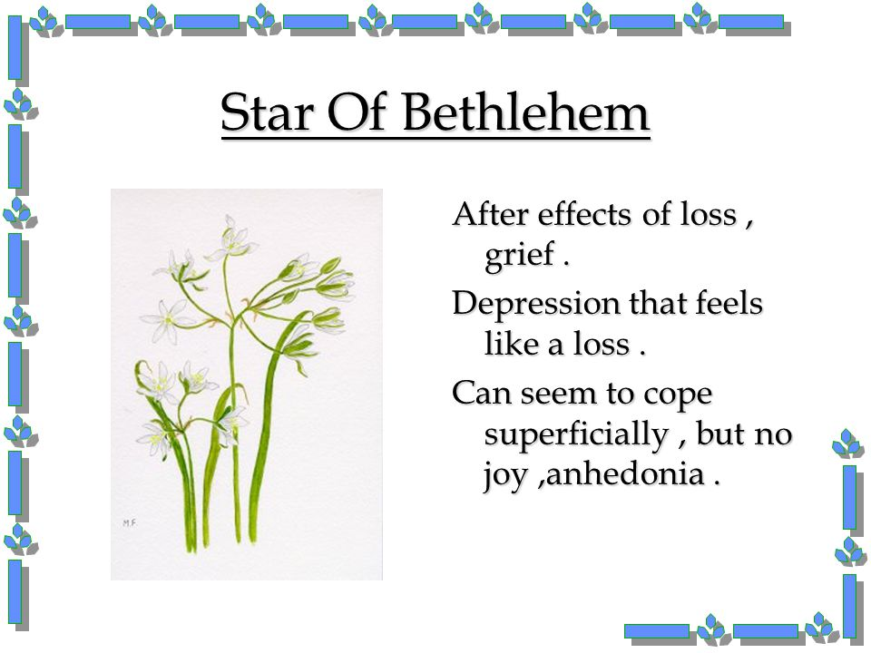 Star Of Bethlehem After effects of loss , grief .